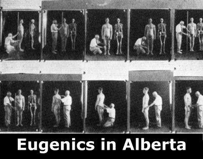 the controversy on eugenics in the Mad science: eugenics and selective breeding - duration: 3:35 stuff they don't want you to know - howstuffworks 97,803 views.
